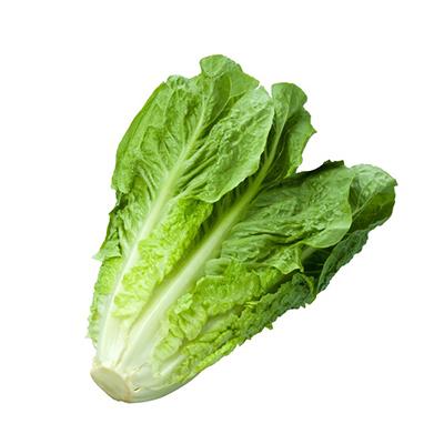 Lettuce  (1 Bunch)