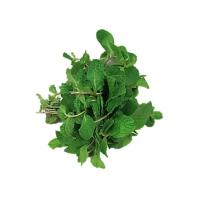 Mint/Pudina (1 bunch)