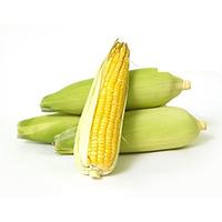Sweet Corn/Maize (Bhutta)