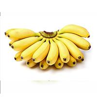 VELCHI Bananas 1 dozen ( 12 pieces)